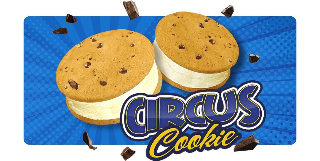 circus-cookies-casty